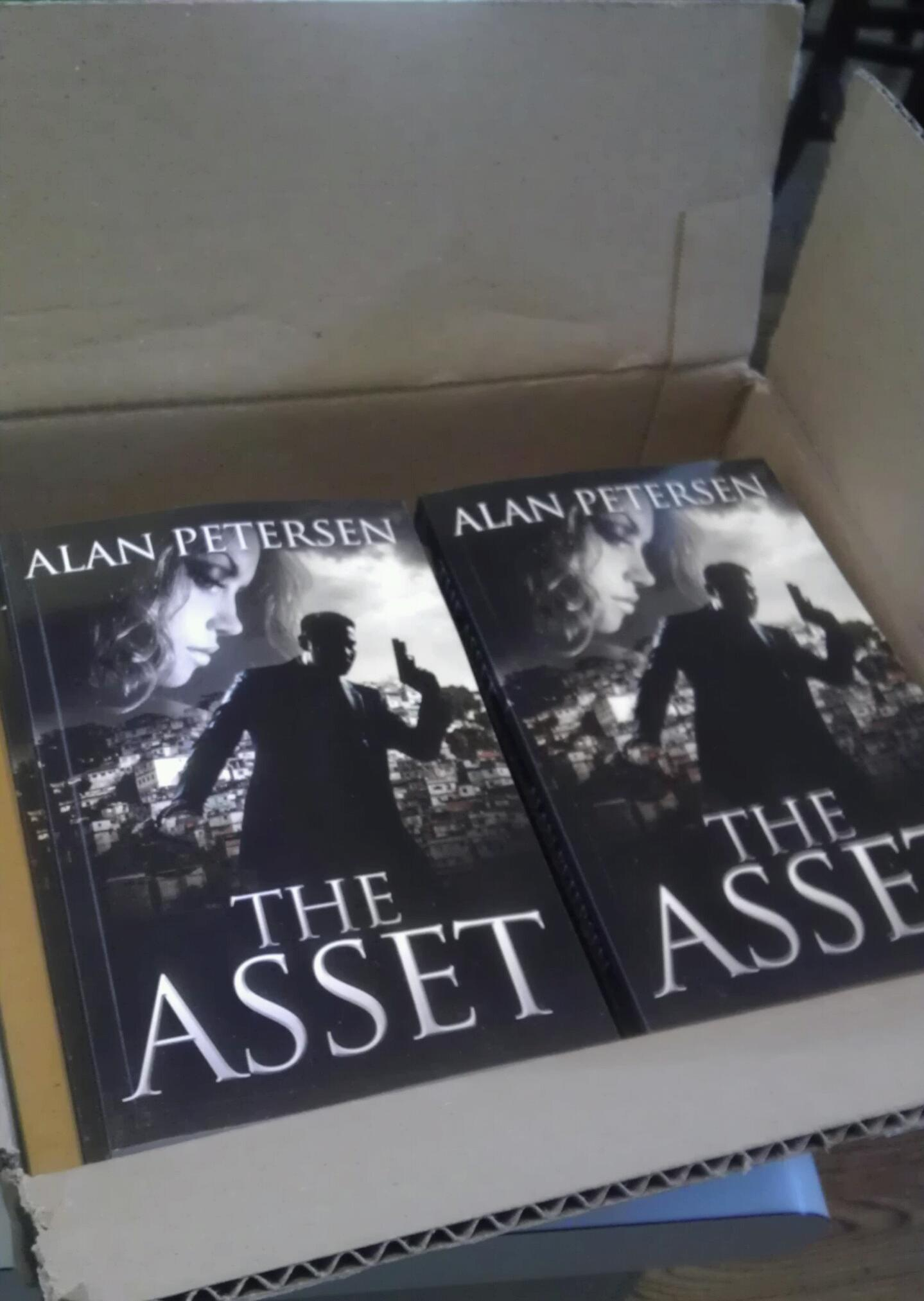 The Asset on Paperback